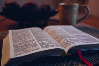Tract: Evidence for the Bible