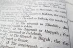 Three (Practical) Reasons to Read Those (Boring) Genealogies