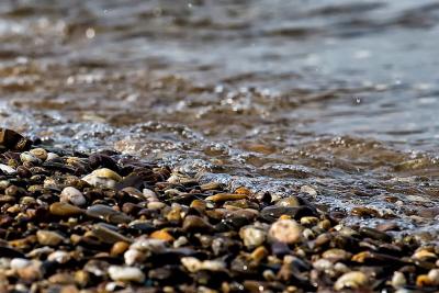 Adoniram Judson on Christian Baptism: A Review