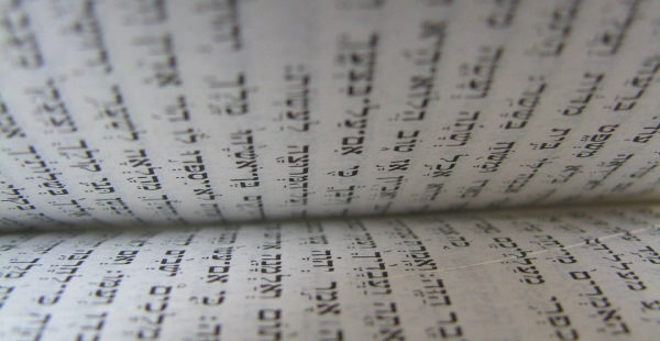 Timothy Talks: Are Bible Numbers Accurate?   From Daniel's Desk
